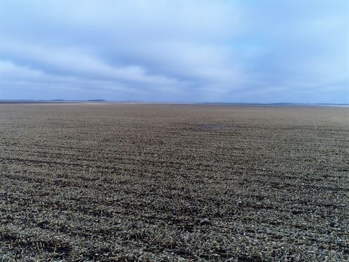 509.98 Acres - Spink Co Cropland : Frankfort : Spink County : South Dakota