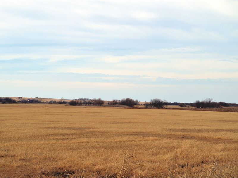 Multi-Property Auction : Walters : Cotton County : Oklahoma