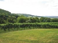 Scenic & Versatile Midwest Haven : Hanover : Jo Daviess County : Illinois