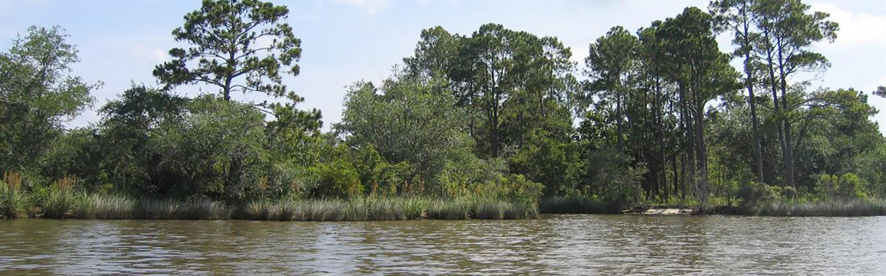 1+/- Acre Private Island : Freeport : Walton County : Florida