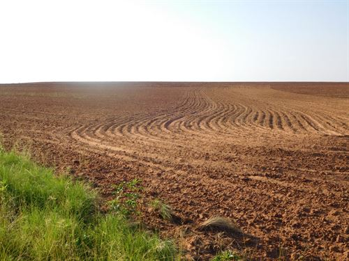 Caddo County Land 156 Acres +/- : Hinton : Caddo County : Oklahoma