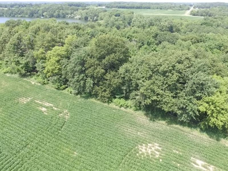Annandale MN Wooded Lot Granite : Annandale : Wright County : Minnesota
