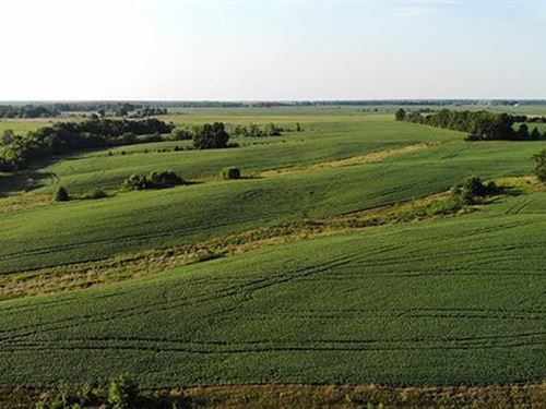 113 Acres in Macon County, Mo : Atlanta : Macon County : Missouri