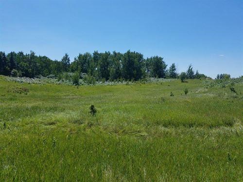 Fergus Falls Land Auction Beautiful : Fergus Falls : Otter Tail County : Minnesota