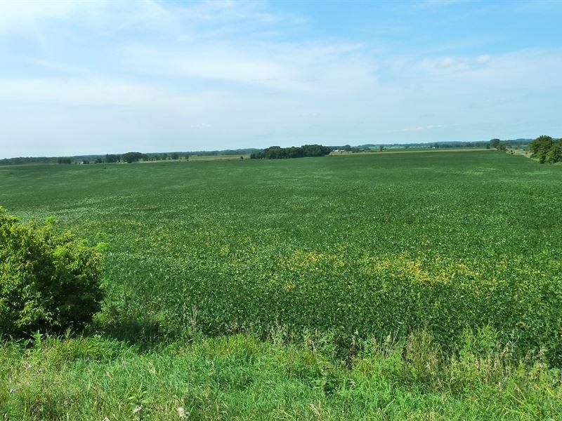 Watkins / Eden Valley MN Ag/Farm : Watkins : Meeker County : Minnesota