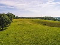 Farmland Auction in Floyd VA : Floyd : Floyd County : Virginia