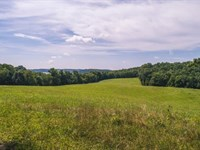 Farm at Auction in Floyd VA : Floyd : Floyd County : Virginia