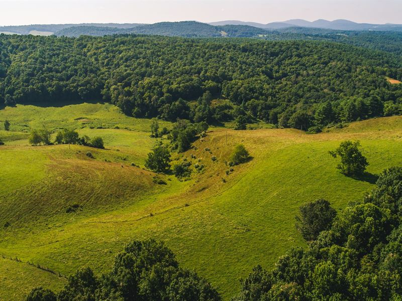 Large Land Auction in Floyd VA : Floyd : Floyd County : Virginia