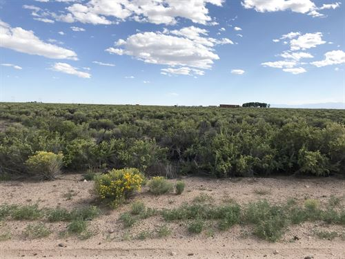 577.18 Acres Saguache County : Alamosa : Colorado