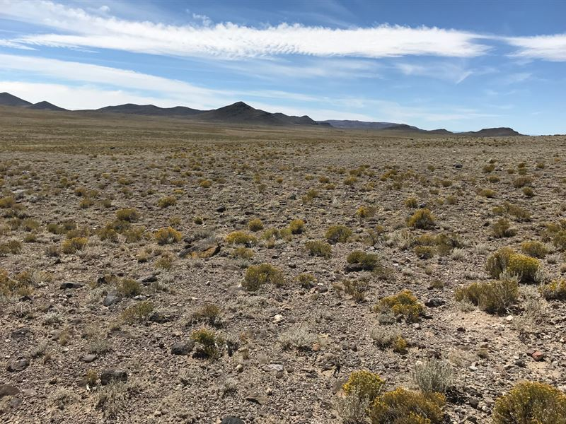 3,000 Acres Costilla County : Alamosa : Alamosa County : Colorado