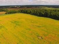 Real Estate Auction In Indiana : Claypool : Kosciusko County : Indiana