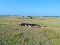 Rocking F Ranch For Sale At Auction : Soper : Choctaw County : Oklahoma