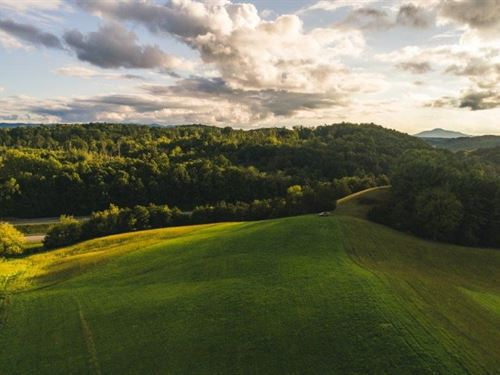 Farmland, Building Sites Auction : Radford : Montgomery County : Virginia