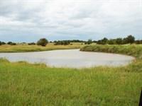 240 Acres Cropland, Grassland, Pond : Lamont : Oklahoma County : Oklahoma