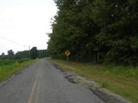 Timberland Auction 403 Acres, 7 12 : Dutton : Jackson County : Alabama