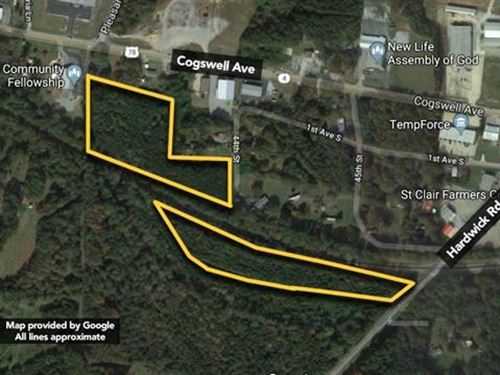Land, Approx 11.04Ac Lot : Pell City : Saint Clair County : Alabama