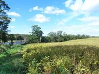 Palmer Township, Mn, Land, 40 : Saint Cloud : Sherburne County : Minnesota