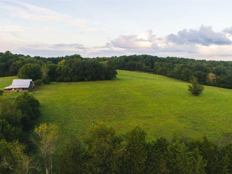 Farm Land in Appomattox VA Auction : Appomattox : Appomattox County : Virginia