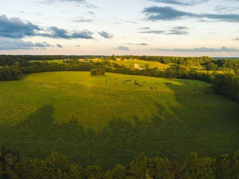 Real Estate Auction Appomattox VA : Appomattox : Appomattox County : Virginia