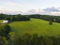 Large Acreage Farm Auction : Appomattox : Appomattox County : Virginia