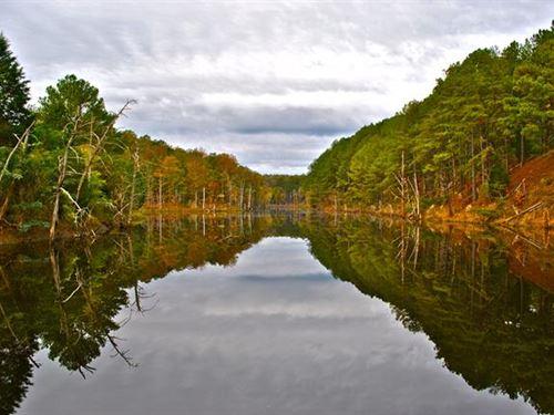 Located in Tuscaloosa, Alabama : Tuscaloosa : Alabama