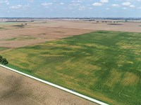 Land Auction In Indiana : Kentland : Newton County : Indiana