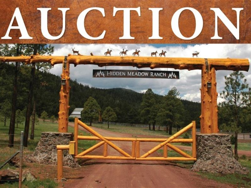 Bulk Sale Auction 9 Premium : Greer : Apache County : Arizona