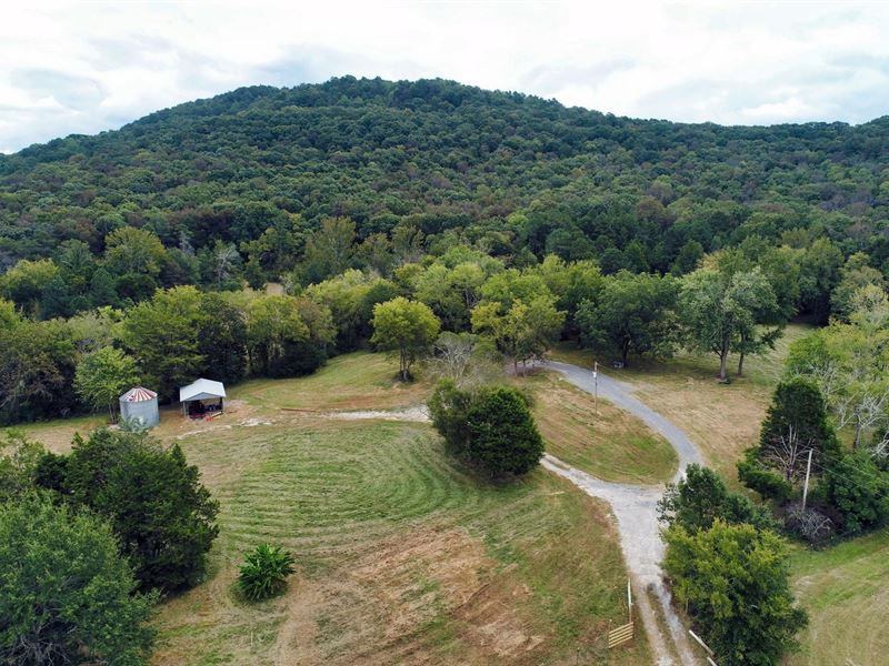 Auction 43 Acres Poor House Road : Hartselle : Morgan County : Alabama