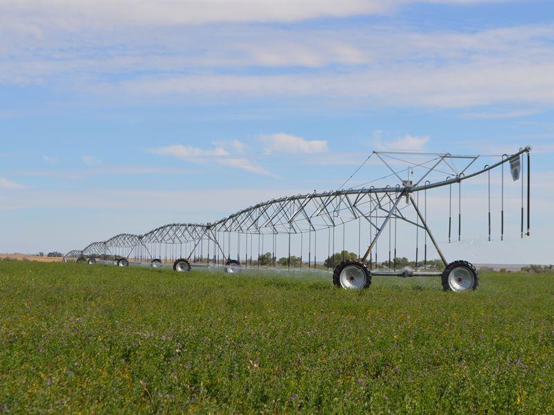 Farm, Grassland & Hunting Property : Las Animas : Bent County : Colorado