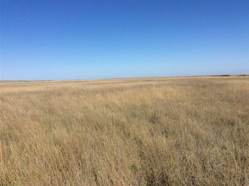 Absolute Land Auction, Cheyenne : Cheyenne Wells : Cheyenne County : Colorado