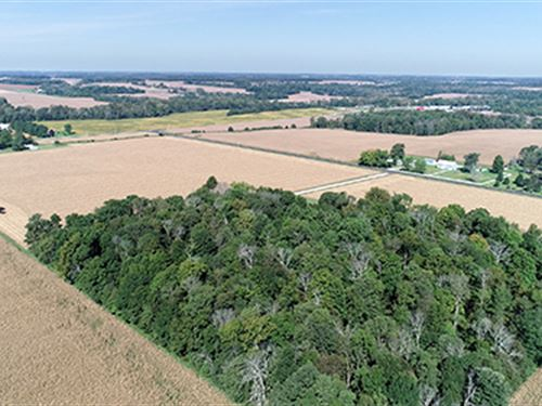 Important Land Auction In Indiana : Centerville : Wayne County : Indiana