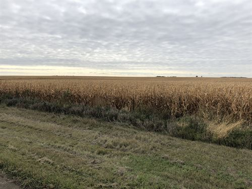 Brown County Farm Land, 564 Acres : Aberdeen : Brown County : South Dakota