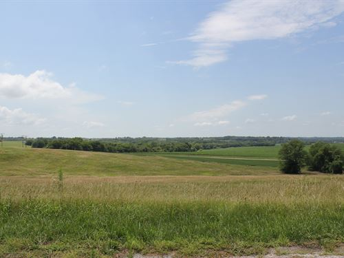 125 Acres Land Auction Atchison, KS : Atchison : Kansas