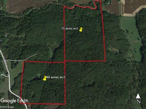Clarke County Iowa Hunting Land : Woodburn : Clarke County : Iowa