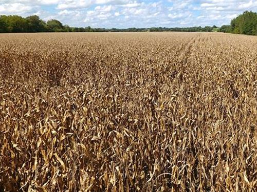 1045.75 Acres in Decatur Coun : Davis : Decatur County : Iowa