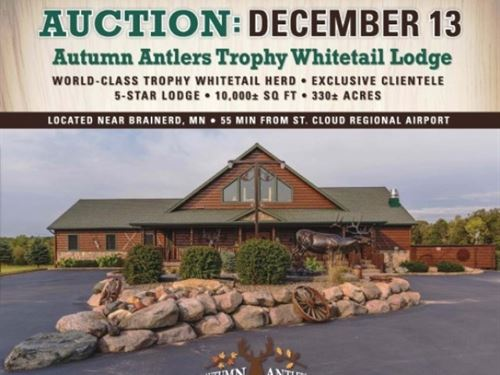 Online Only Auction Trophy : Long Prairie : Morrison County : Minnesota