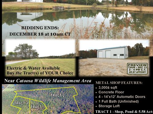 Shop, Pond & 82 Acres In 4 Tracts : Crossville : Cumberland County : Tennessee