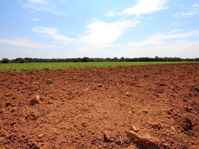 Land & Producing Minerals Auction : Lindsay : Garvin County : Oklahoma