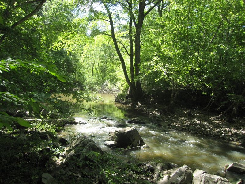 Auction, Exceptional Riverfront : Land Auction in Chase ...