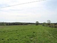 157 Acre Farm Auction Warren CO : Bowling Green : Warren County : Kentucky