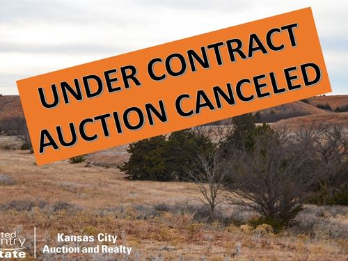 Hunting Pasture Land Online Auction : Land Auction : Sun