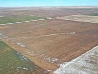 1560 Mol Acres Cropland : Boise City : Cimarron County : Oklahoma