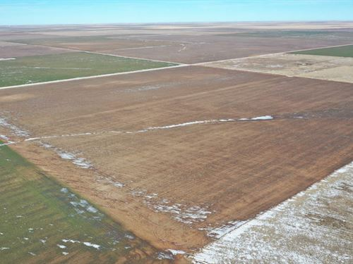 1560 Mol Acres Cropland : Boise City : Cimarron County : Oklahoma