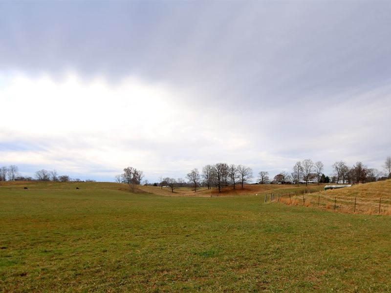Online Auction, 32 Acres & 2 Ponds : Cookeville : Putnam County : Tennessee