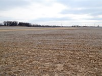 Land Auction In Will County, Il : Manteno : Will County : Illinois