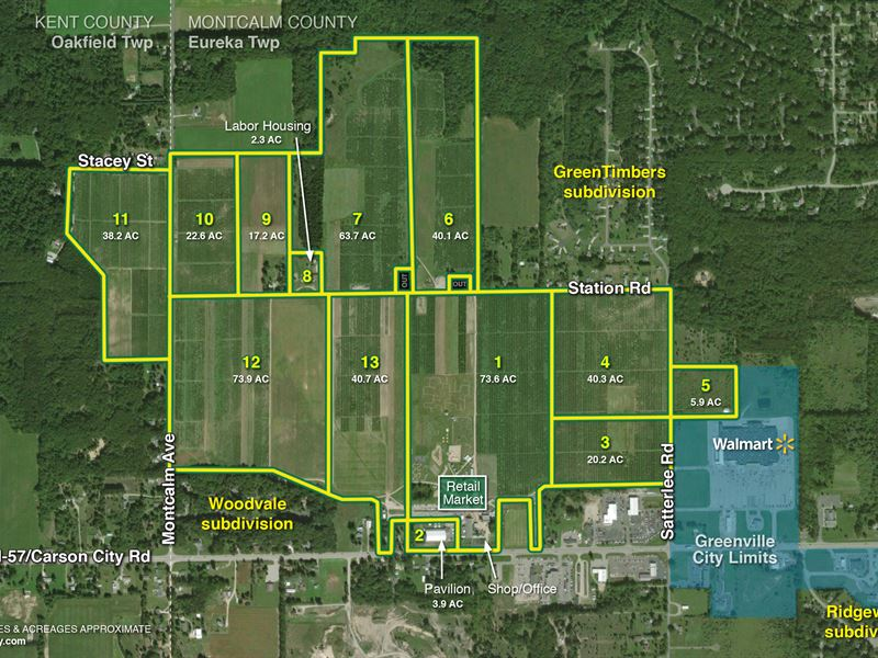 Orchard Offered In 13 Tracts : Greenville : Montcalm County : Michigan