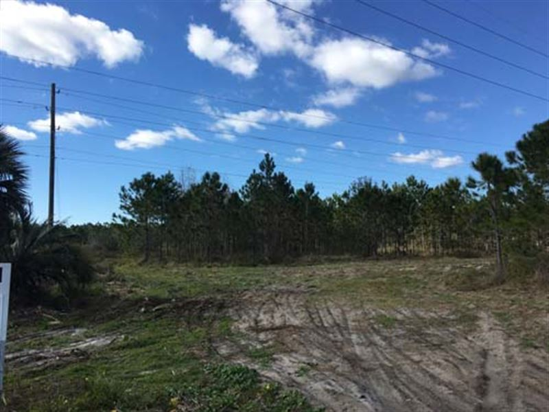 Property 1219, Commercial Land : Howey In The Hills : Lake County : Florida