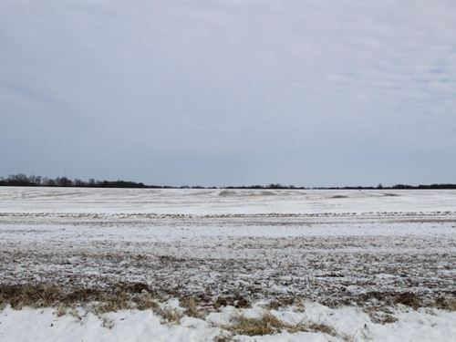 Tillable Row Crop Farm Land Auction : Hallsville : Boone County : Missouri