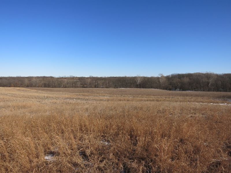 Gentry County Land Auction March 2 : King City : Gentry County : Missouri