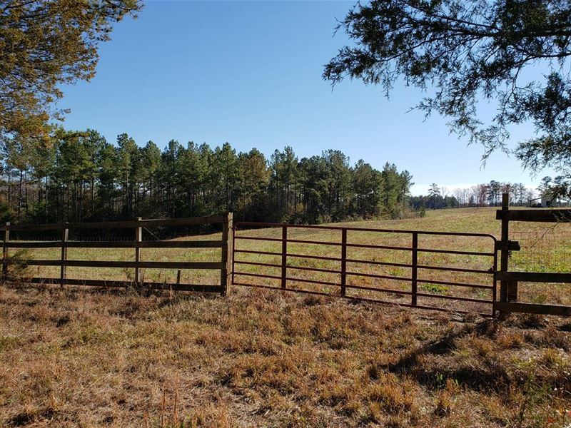 Auction, Property 1116 : Honea Path : Abbeville County : South Carolina